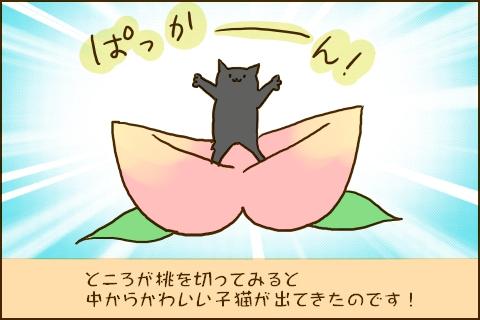 img_peach_catbirth05